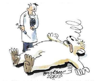 dyrlæge tegning-
